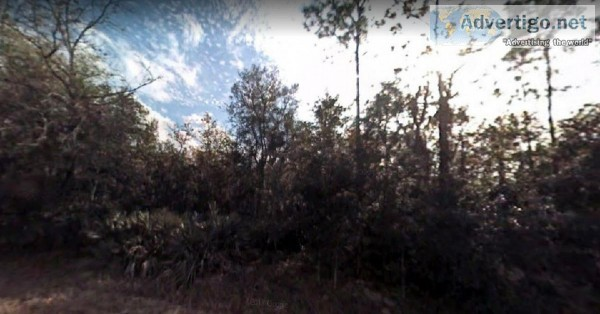 1.5 Acres for Sale in Georgetown FL