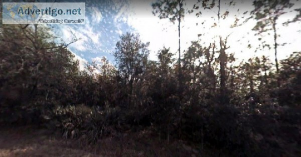 1.24 Acres for Sale in Georgetown FL