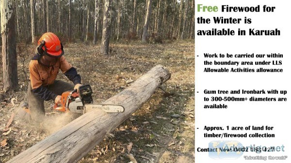 Free Firewood Available in Karuah for this winter