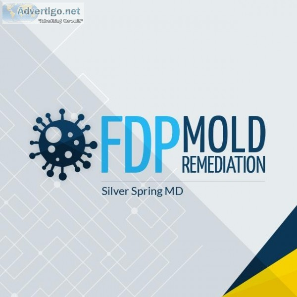 FDP Mold Remediation  Mold Remediation Silver Spring