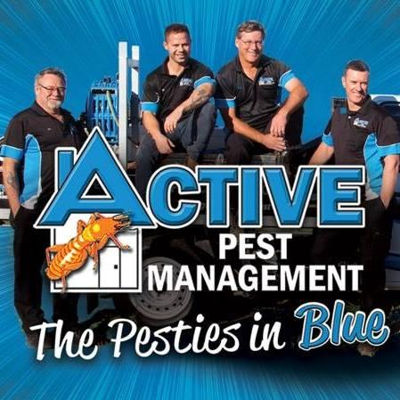 Specialist For Pest Control in Byron Bay