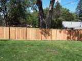 Professional Fence Construction