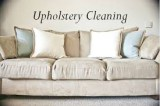Professional upholstery cleaners