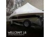18 foot Wellcraft 18