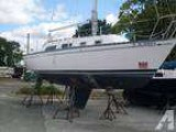 22  Hunter Sailboat -