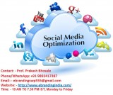 1the most trusted seo services in nashi