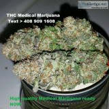 High quality mmj available for sale