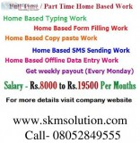 Part time home based offline online data