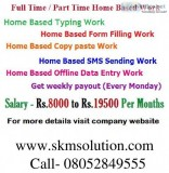 Fresher part time home based online data