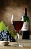 # wine club: enjoy fine wines & make $