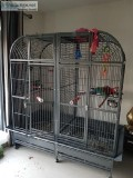 Large Double Macaw Cage