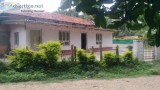 Acres of coffee estate for Sale in Belur Hassan