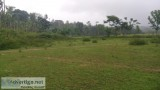 Acre of Agriculture Land for Sale in Sakleshpur