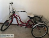 Electric Adult Tricycle