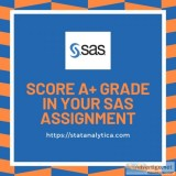 Pocket Friendly SAS Assignment Help for Students