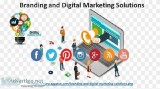 Branding And Digital Marketing Solutions Taking The Right Servic