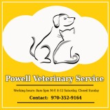 Powellvets Dog Teeth Cleaning Greeley