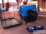 Ultimate Puppy Starter Kit (Metal Crate Travel Crate and Bowls)