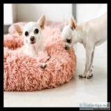 Plush Fur Dog Bed % OFF  FREE SHIPPING