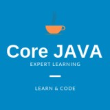 PROFESSIONAL TRAINING IN CORE JAVA AT VSITDWARKA