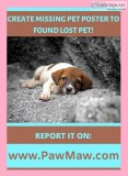 LOST AND FOUND PET RESCUE COMMUNITY