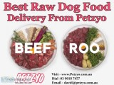 Best Raw Dog Food Delivery From Petzyo