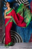Buy Gorgeous Dupion Silk Sarees Online from Mirraw