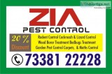 Hennur pesticides | pest control | termi